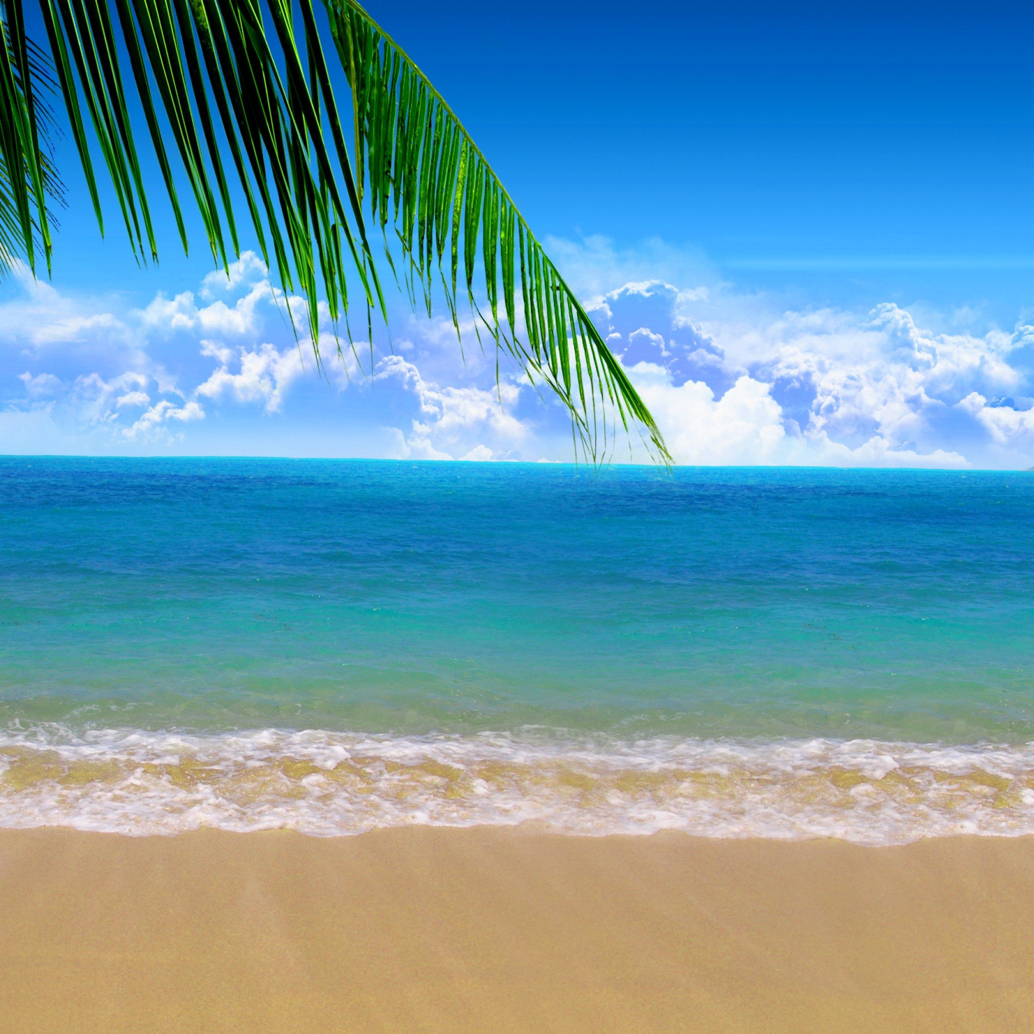 Summer Beach Wallpaper Search Results newdesktopwallpapersinfo 2048x2048