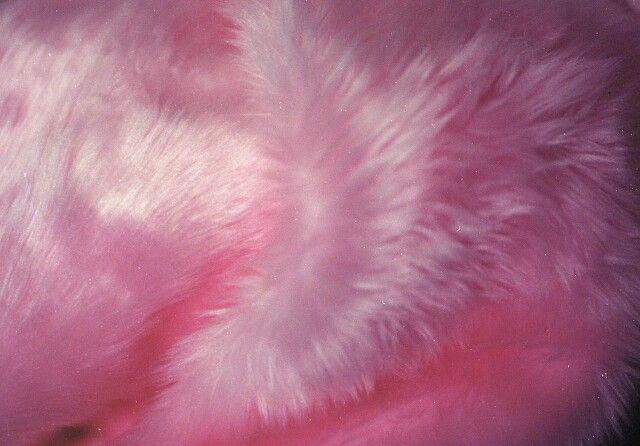 Pink fur Backgrounds Pinterest 640x446