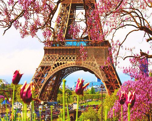 Spring Paris Travel Pinterest 500x400