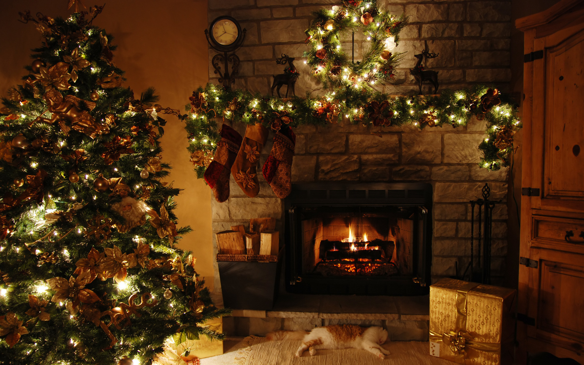 Christmas Tree and Fireplace   Wallpapers Pictures Pics Photos 1920x1200