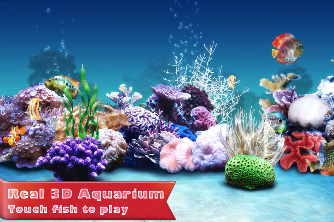 Aquarium Fish Live Wallpaper   Android Apps on Google Play 1280x850