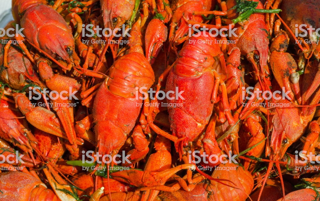 Red Boiled Crayfish Or Crawfish Background Lobster Closeup Stock 1024x645