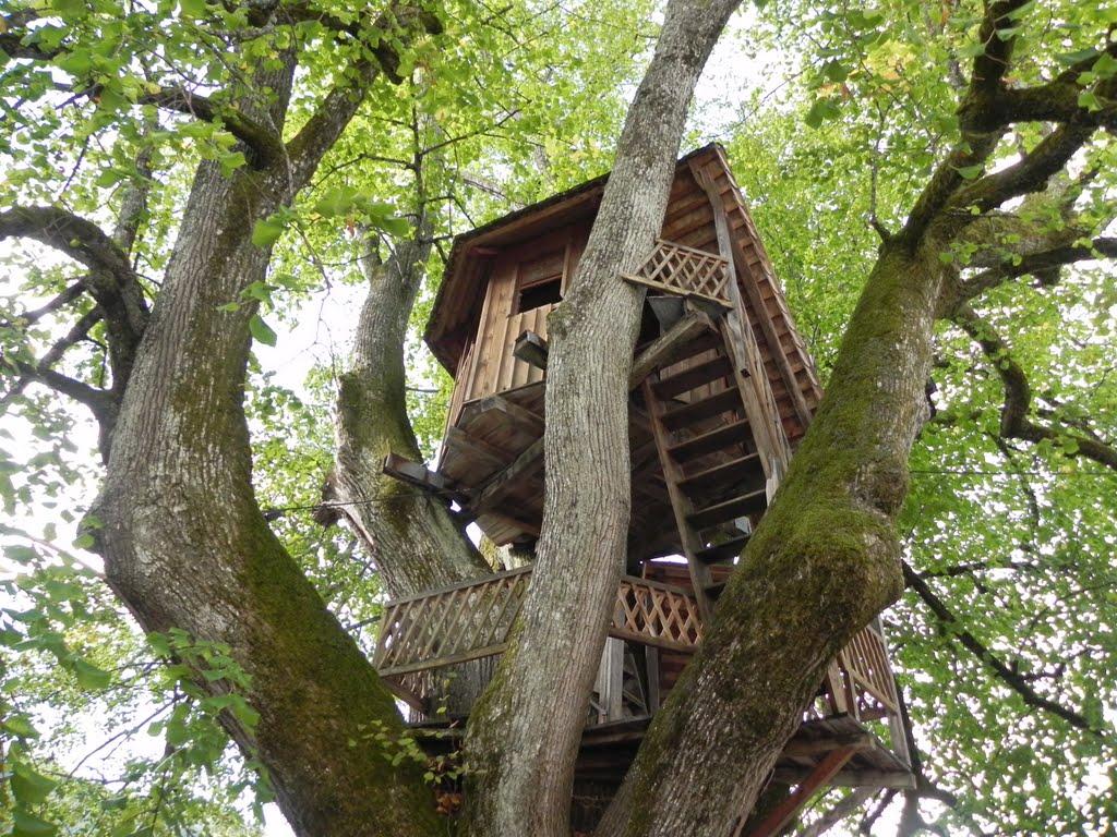 Tree house wallpaper wallpapersafari for Tree wallpaper for home