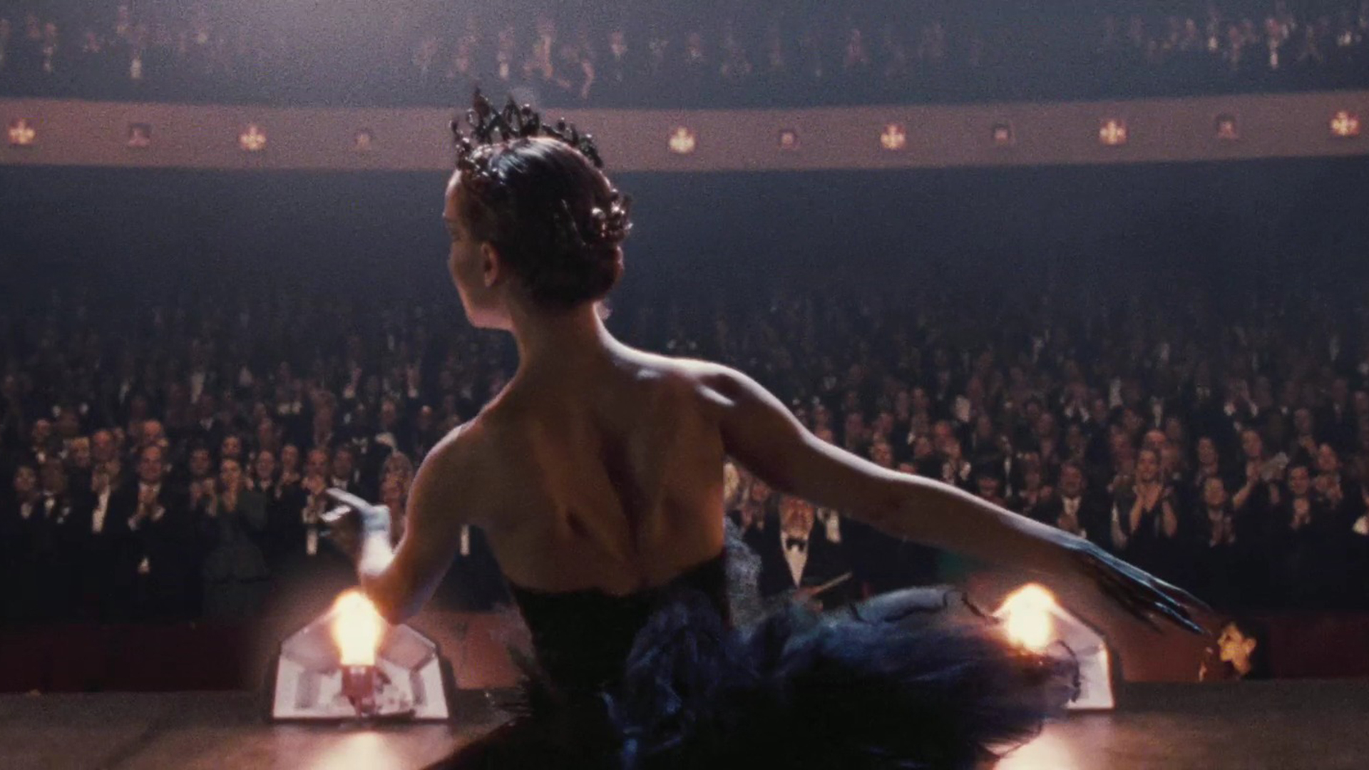 Black Swan Desktop Wallpapers for HD Widescreen and Mobile 1920x1080
