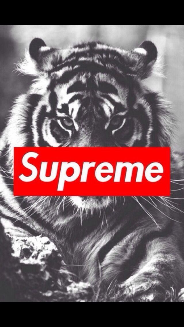 supreme iPhone wallpapers Pinterest 640x1136