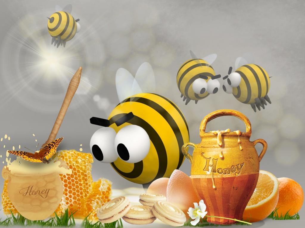 Honey Bee Desktop Wallpaper - WallpaperSafari