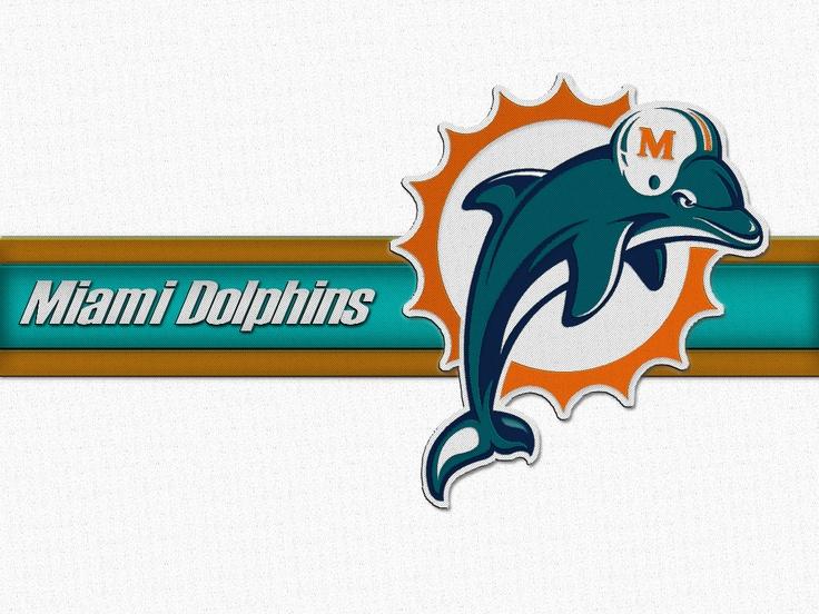 Miami Dolphins 736x552