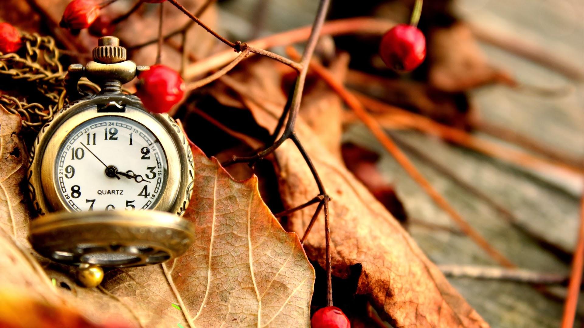 Autumn Pocket Watch Full HD Desktop Wallpapers 1080p 1920x1080