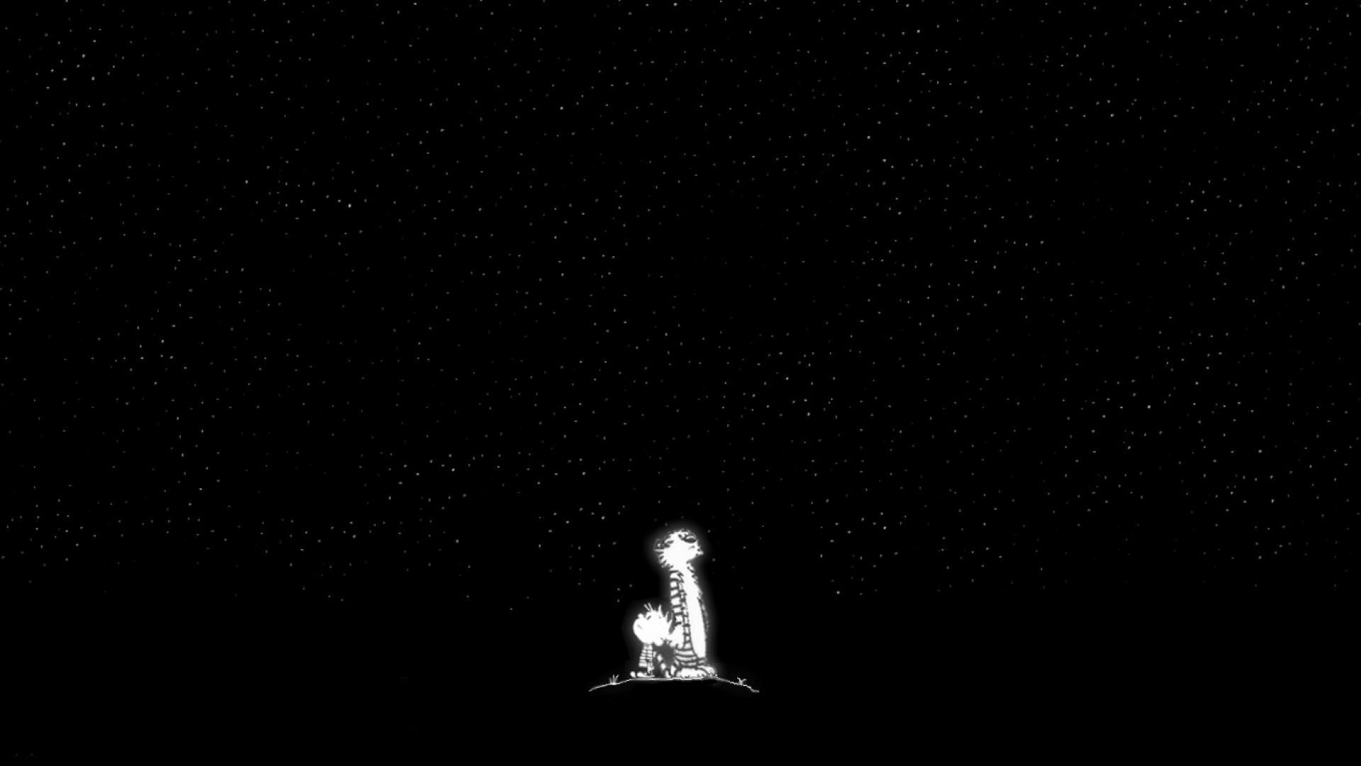 Free Download Stars Calvin And Hobbes Night Sky Wallpaper 14047