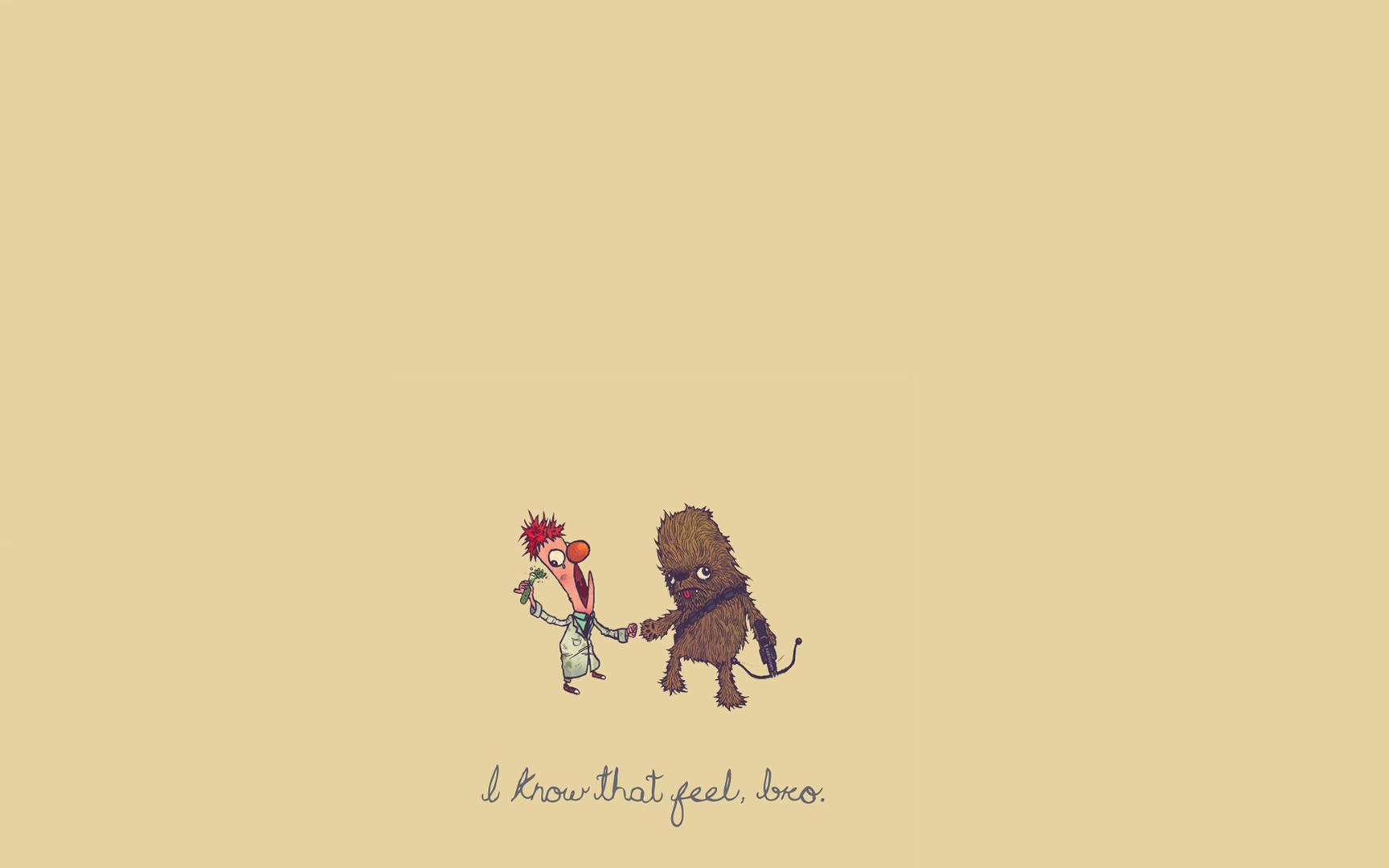 Chewbacca humor wallpaper 19294 1728x1080