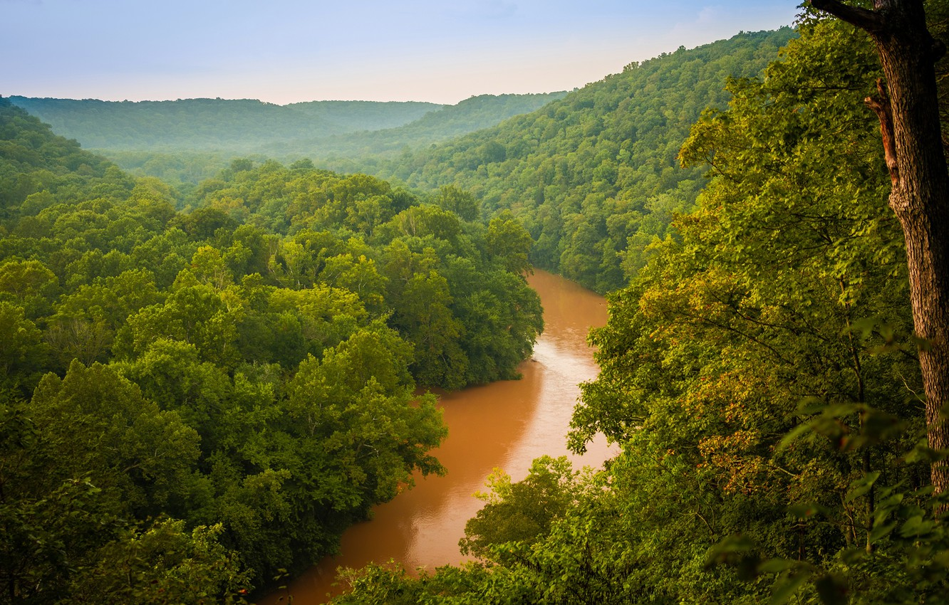Wallpaper greens forest trees river haze USA Mammoth Cave 1332x850