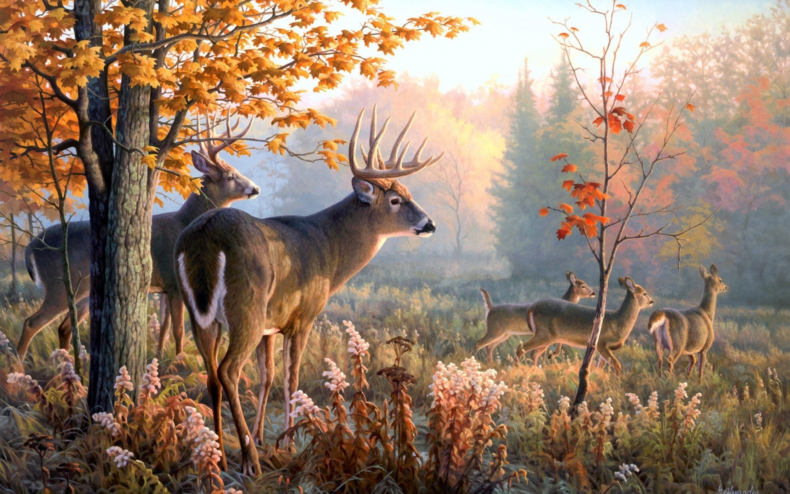 wallpaper Deer Art Wallpaper hd wallpaper background desktop 2560x1600