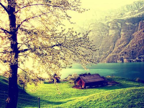 Photography tumblr beautiful nature Wallpaper in Pixels 500x375