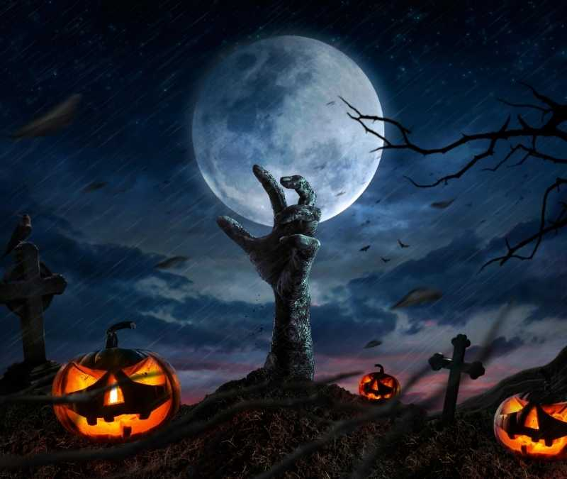 Scary Halloween Wallpapers 2020 Halloween Background HD 800x675
