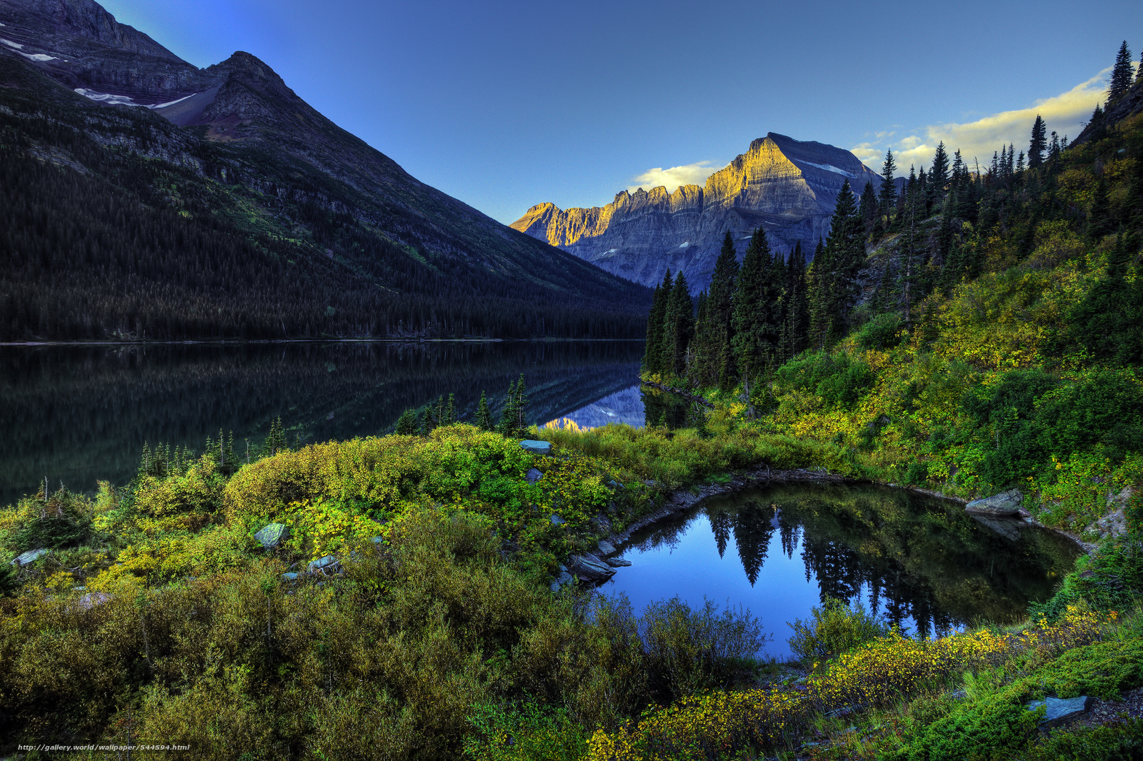 Download wallpaper Glacier National Park lake Mountains trees 1600x1066