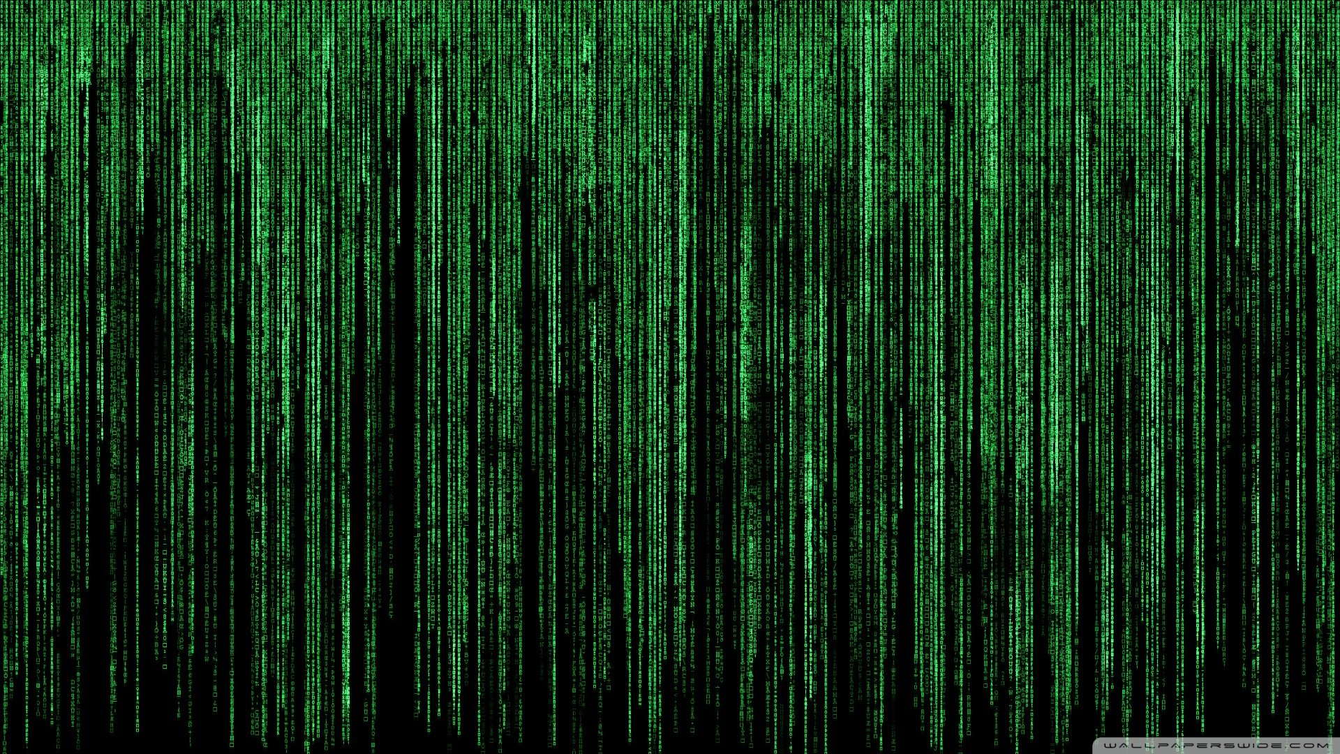 Google themes matrix - B H Nh N N Fullhd 1920x1080 Window 10 Tuy T P Tinhte Vn
