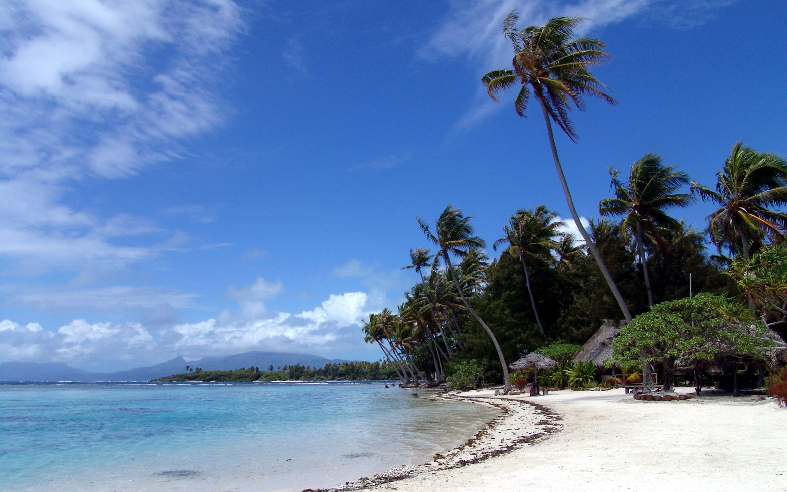 2560x1600 Polynesian beach desktop PC and Mac wallpaper 2560x1600