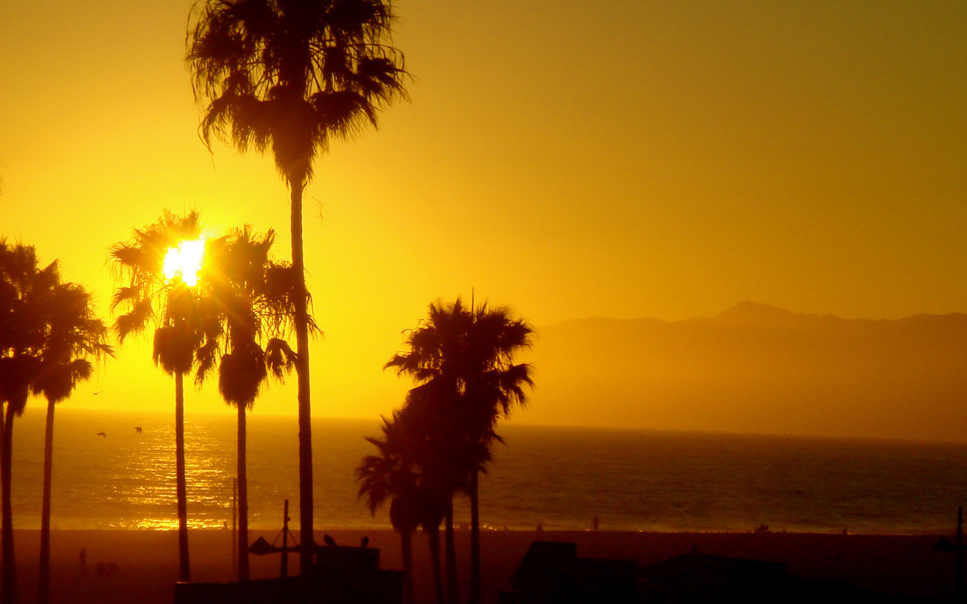 Venice Beach California Wallpaper 67 images 1920x1200