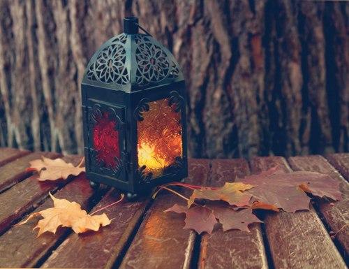 autumn evening on Tumblr 500x385