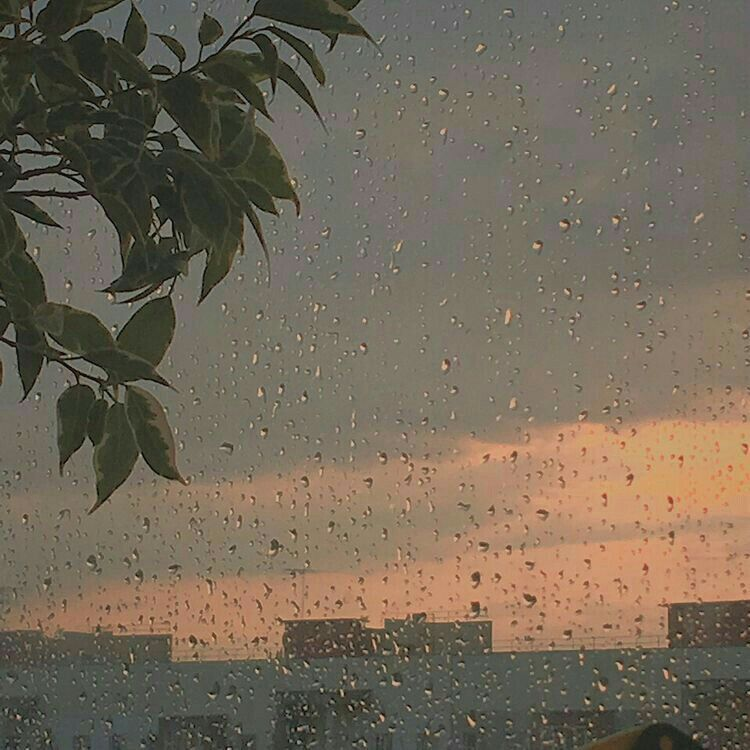 Rain love Sky aesthetic Aesthetic wallpapers Aesthetic pictures 750x750