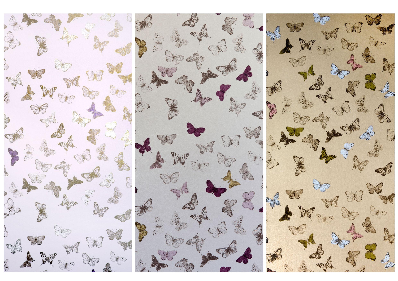 49 Schumacher Birds And Butterflies Wallpaper On Wallpapersafari
