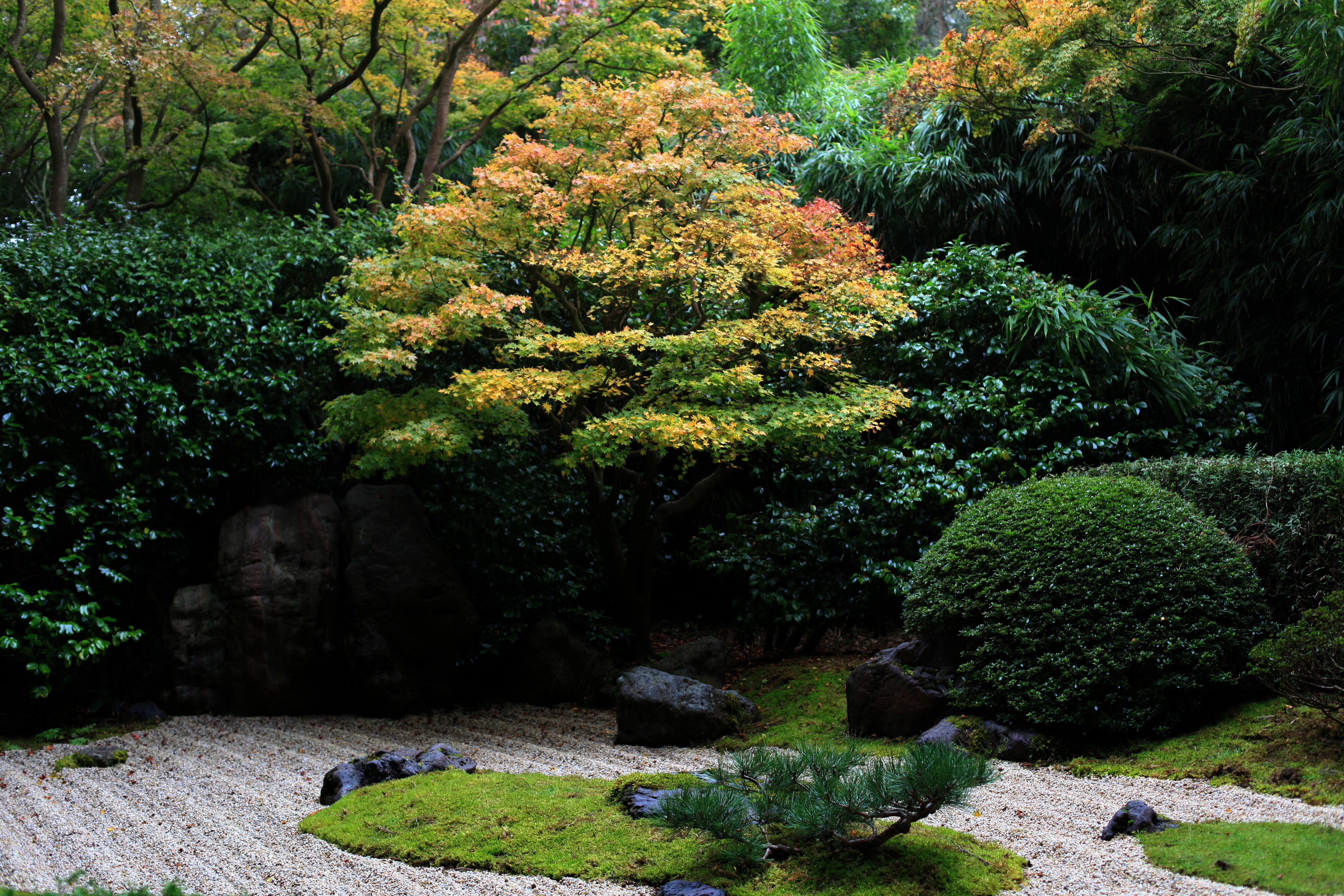 Zen Garden Wallpaper D...