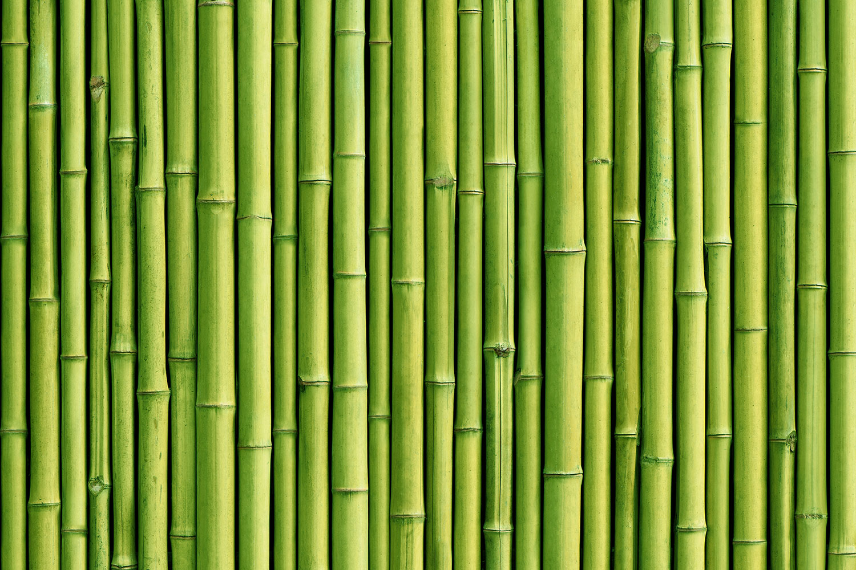 Asian Zen Wallpaper Theme for Spa Home Walls Decor 1500x1000