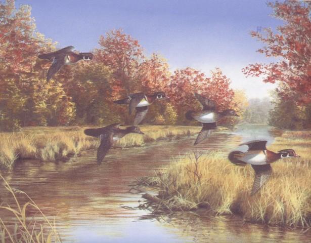 Beige Lake Flying Ducks Wallpaper Border   Country Folk 615x480