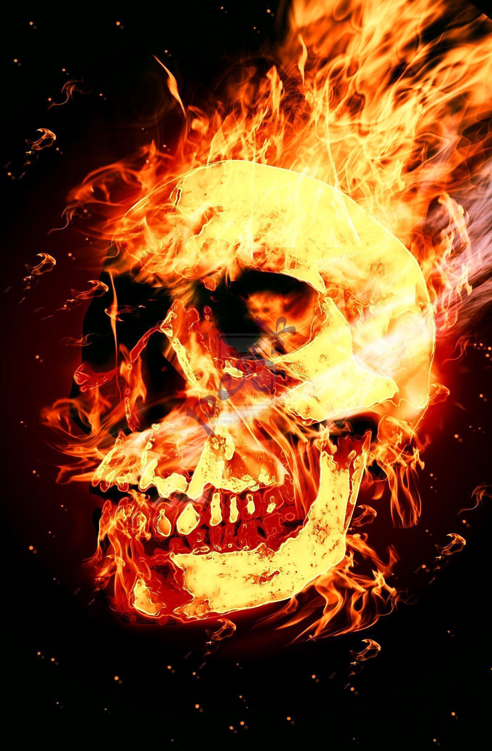 Skulls On Fire Wallpapers 1600x2442