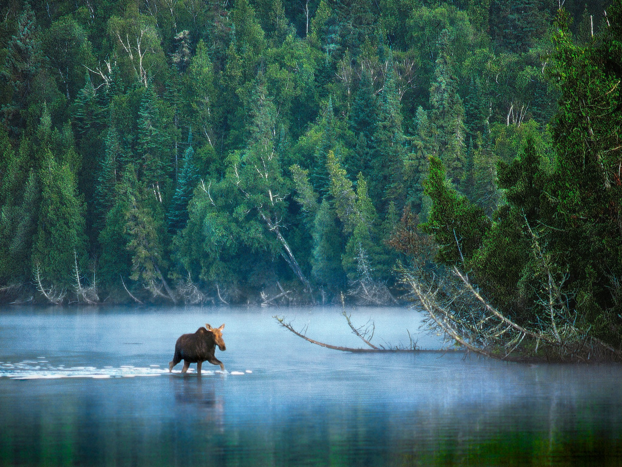 10 Underrated National Parks in the US   Cond Nast Traveler 2048x1536