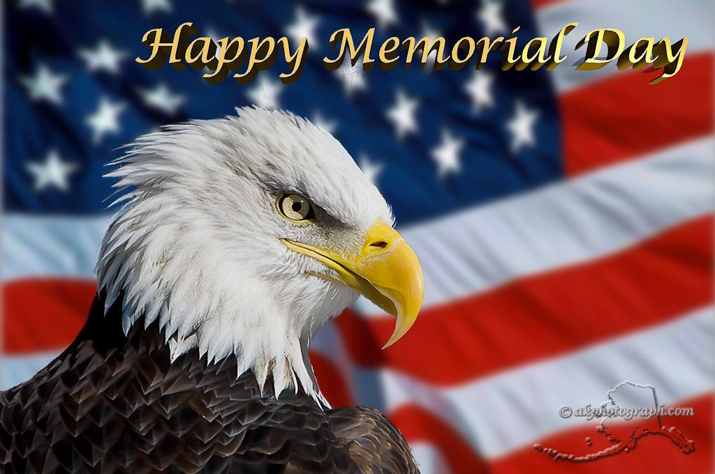 Bald Eagle Flag Wallpaper Bald eagle and flag 1024x680