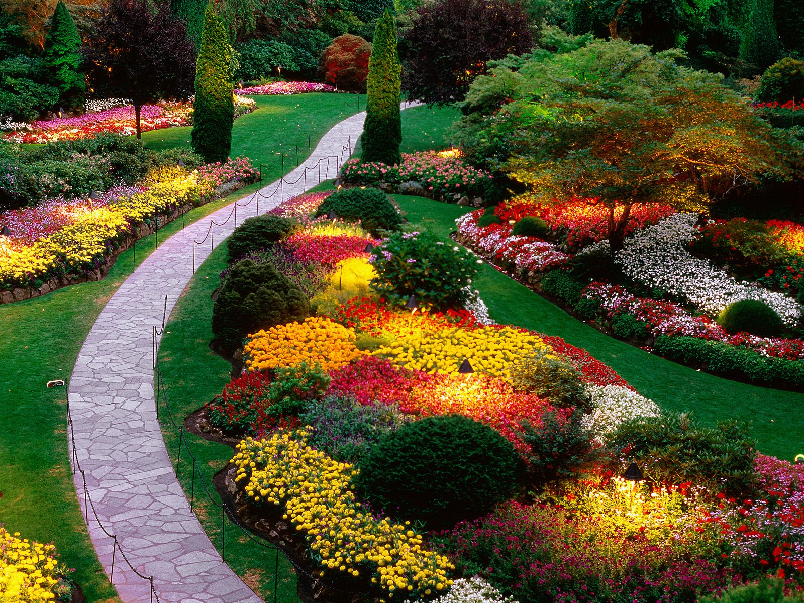 Vegetable garden wallpaper flower garden wallpapers home vegetable 1600x1200