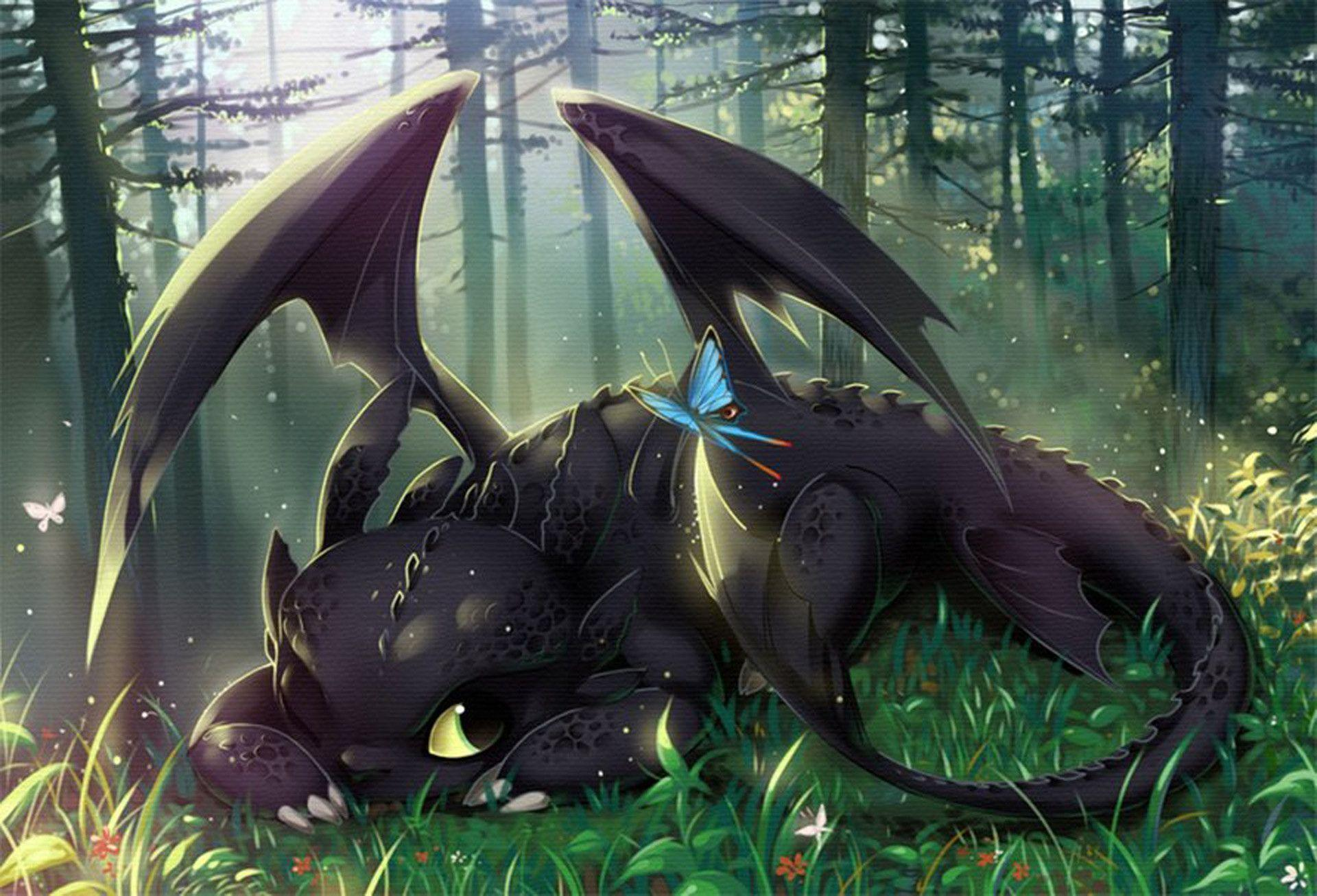 Toothless Wallpapers 1920x1306