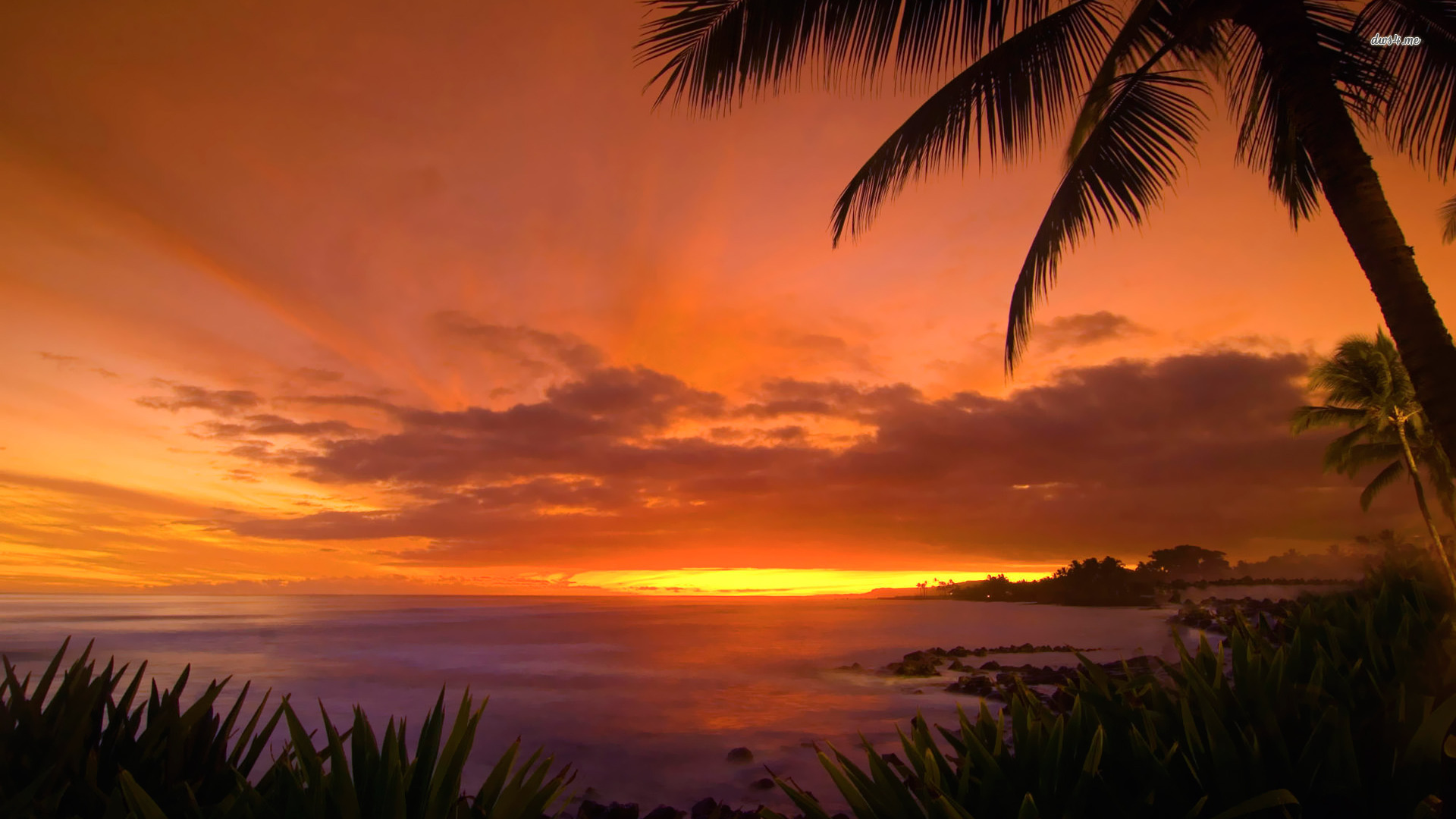 Hawaii Sunset wallpaper 1920x1080