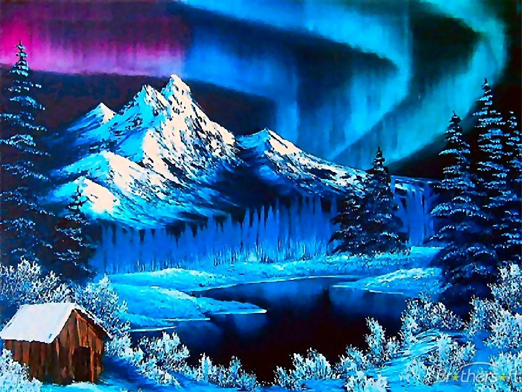 Northern Lights During the Winter Wallpaper   Winter Photo 36137730 1024x768