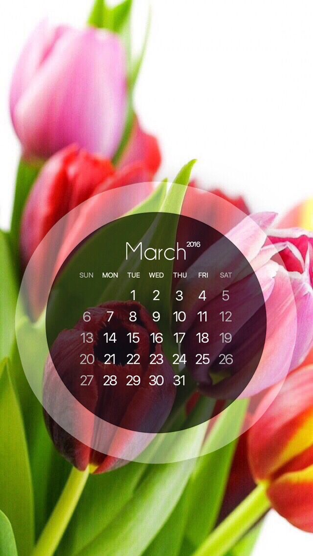 Wallpaper calendar March 2016 monthly wallpaper in 2019 640x1136
