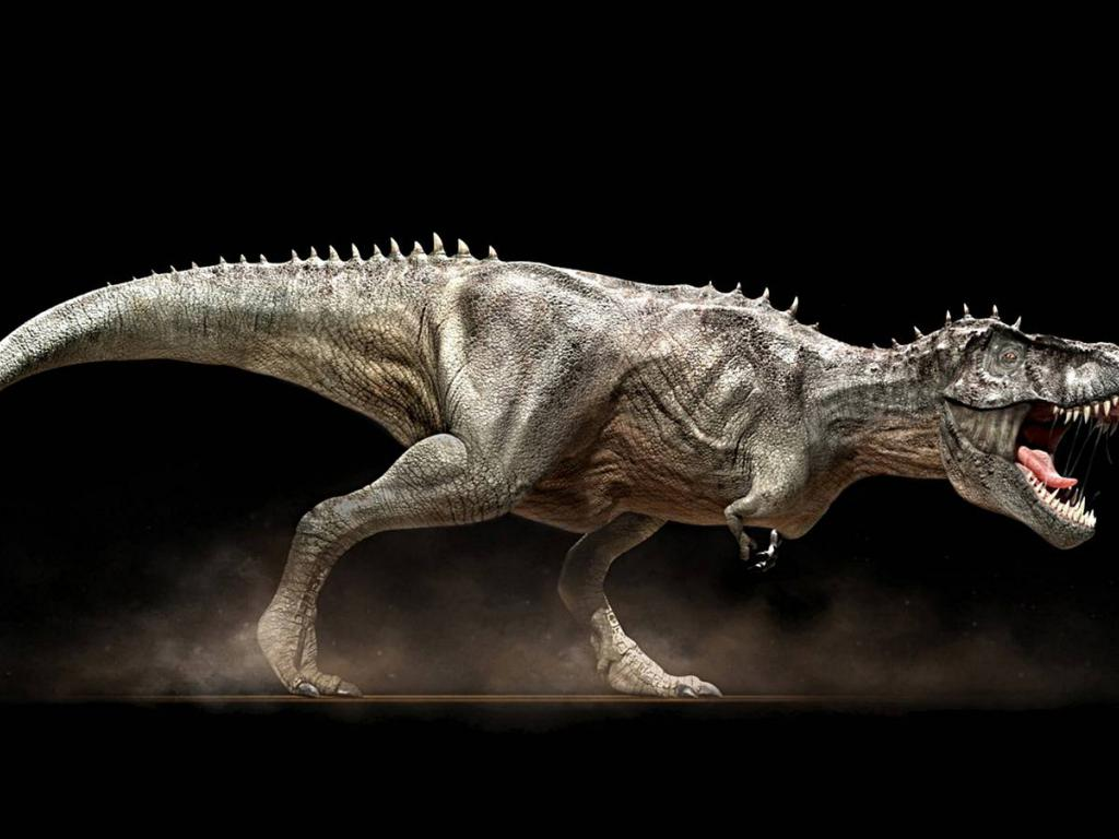 rex wallpaper   6283   High Quality and Resolution Wallpapers on 1024x768