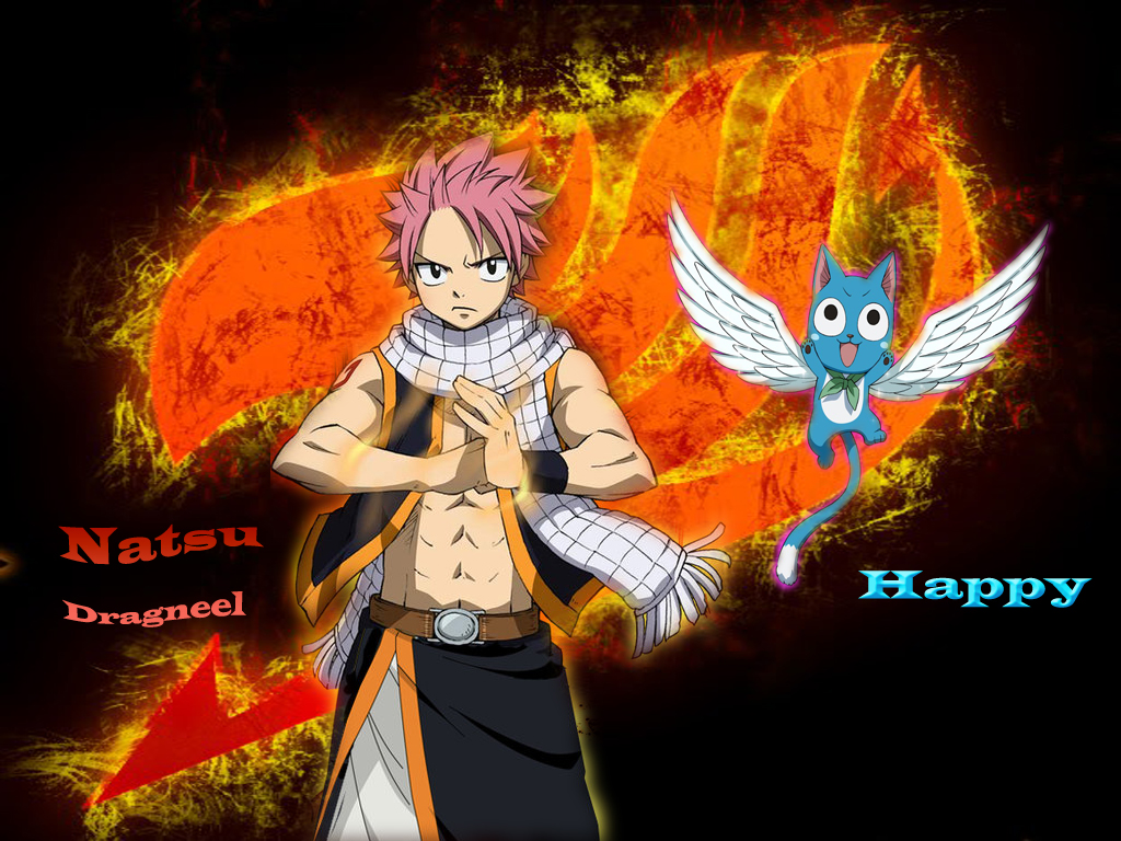 Fairy Tail Natsu and Happy Wallpaper by heongle 1024x768