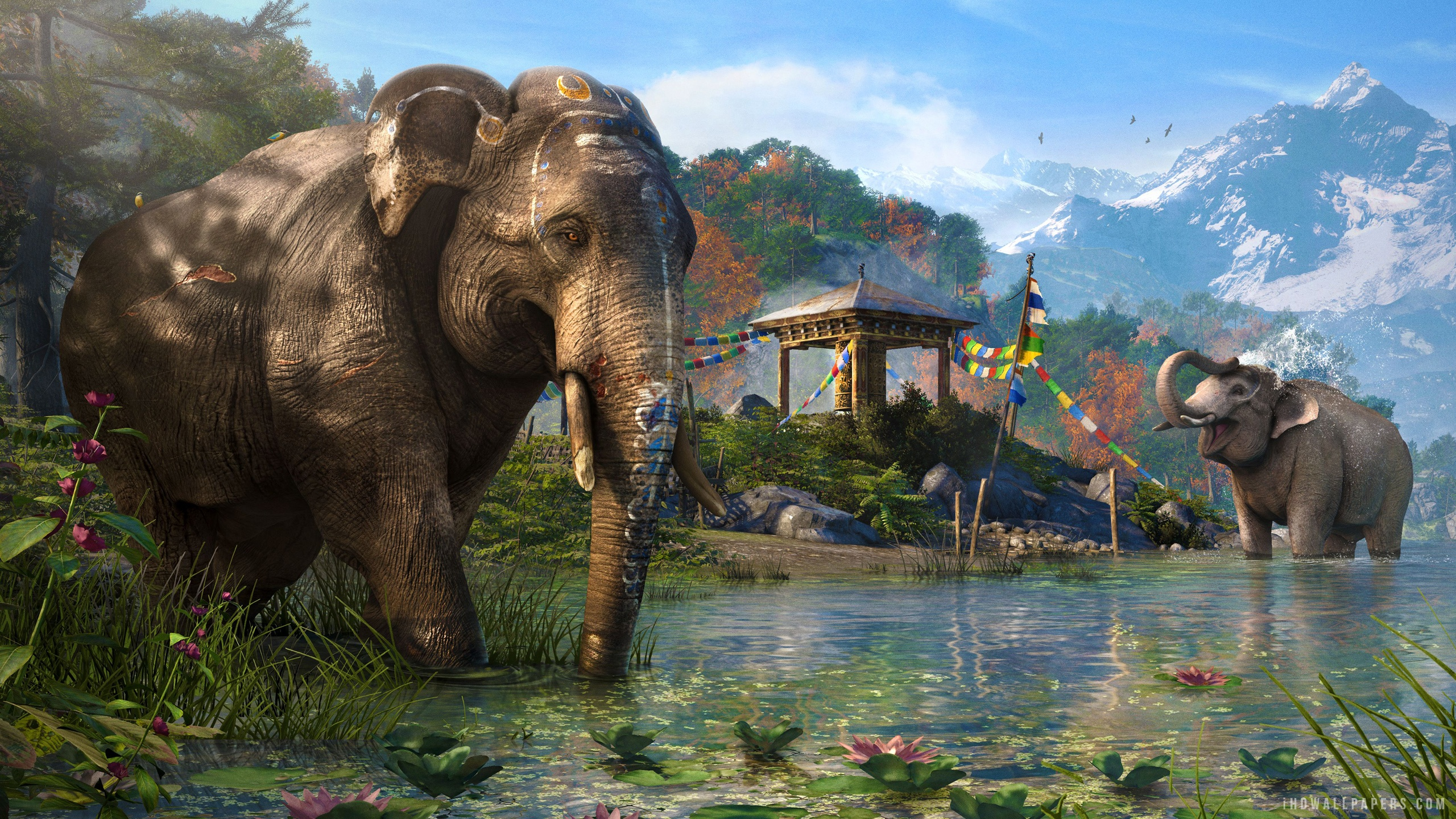 Free Download Far Cry 4 Elephant Vista Wallpaper 2560x1440 For