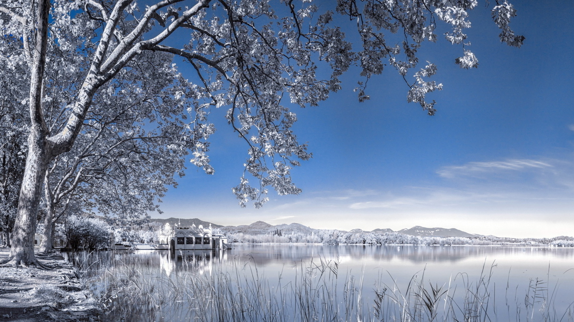 Winter Backgrounds for Desktop 1920x1080
