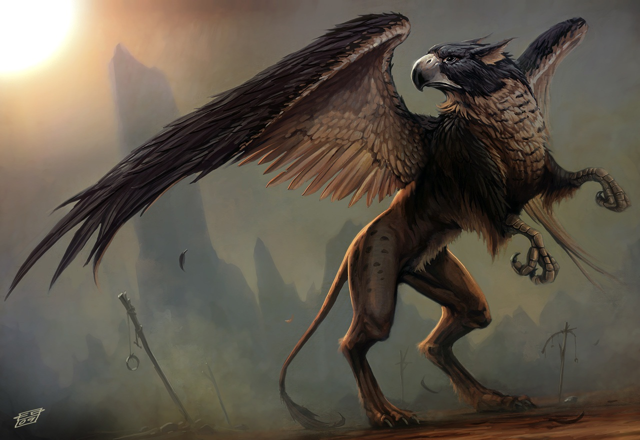 Griffin wallpaper wallpapersafari - A picture of a griffin the creature ...