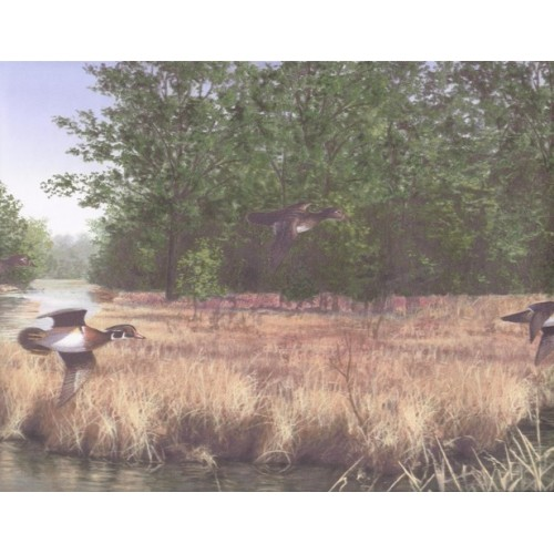 Lake Scenery Flying Ducks Wallpaper Border 500x500