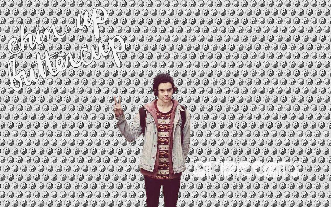 Harry Styles WallPaper Desktop and mobile wallpaper Wallippo 1131x707