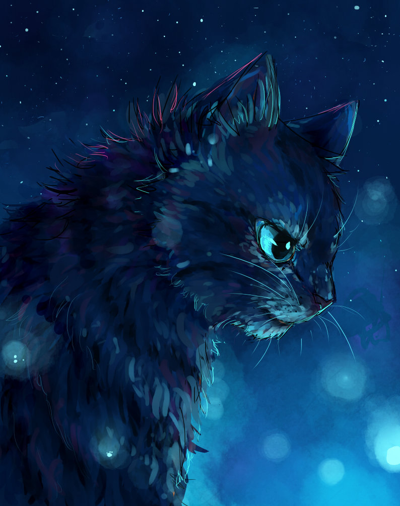Warrior Cats Wallpaper Jayfeather Jayfeather by heyfresco 794x1006
