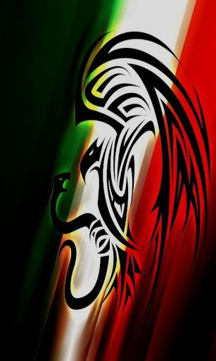 Cool Mexico Flag Wallpaper Tags mexican flag cool 307x512
