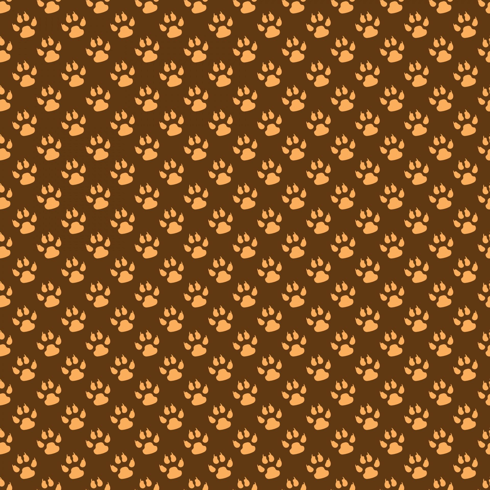 Paw printpaw printsbackgroundwallpaperpattern   photo 1920x1920