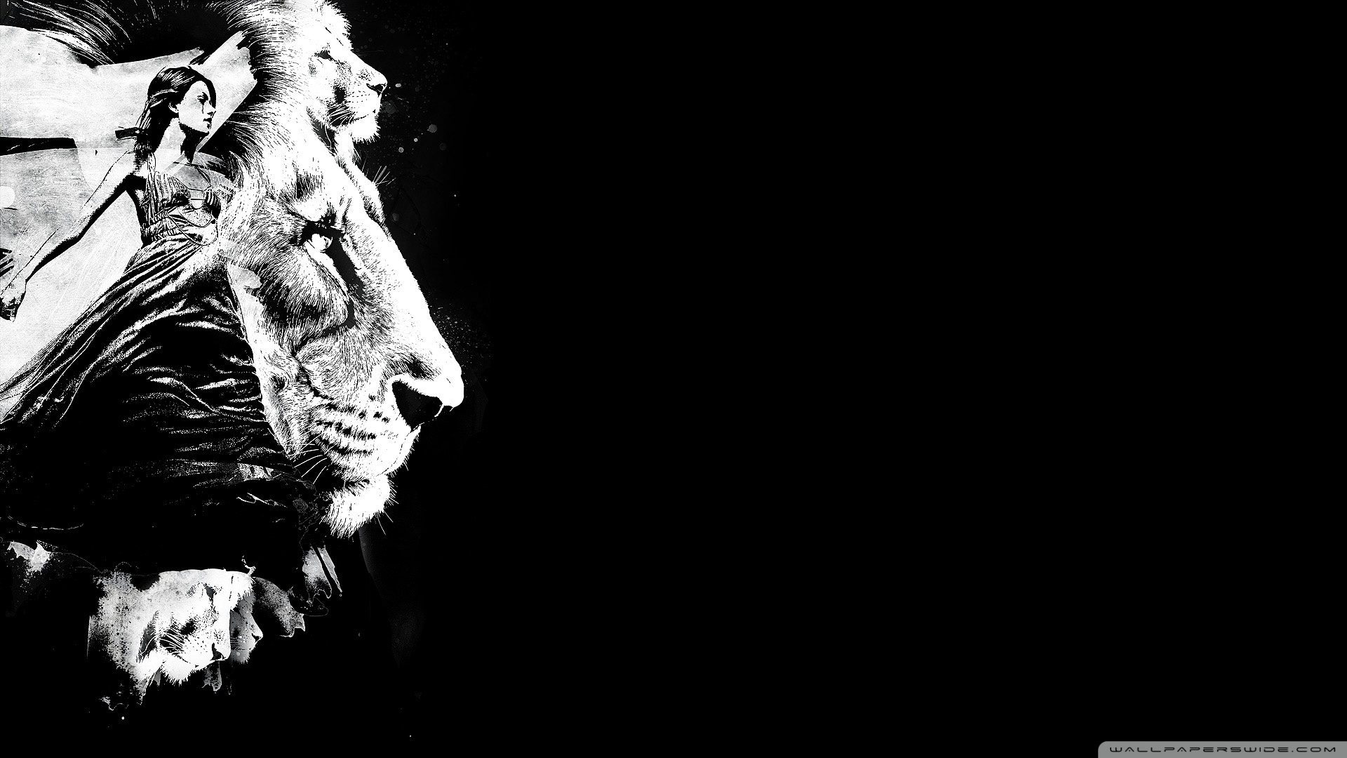 Free Download Black Lions Wallpaper To The Lions Wallpaper 1920x1080 For Your Desktop Mobile Tablet Explore 47 Lion Wallpaper Black And White White Lion Wallpaper Desktop Beautiful White Wallpaper