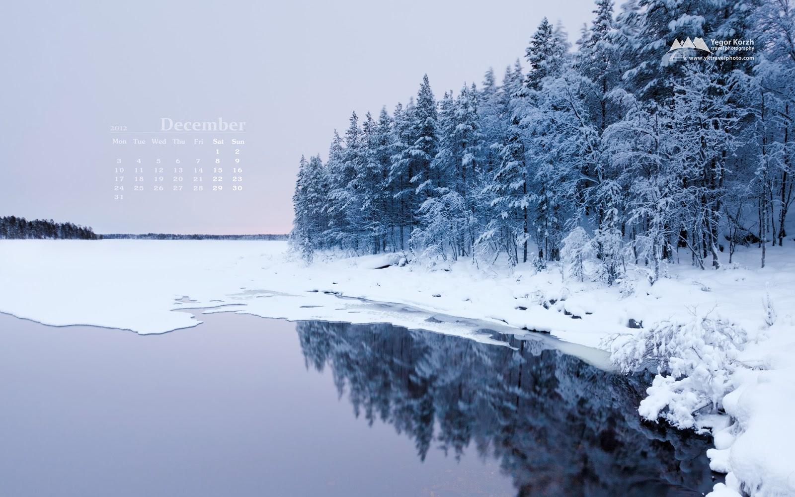 Desktop Wallpapers Winter Wonderland 1600x1000