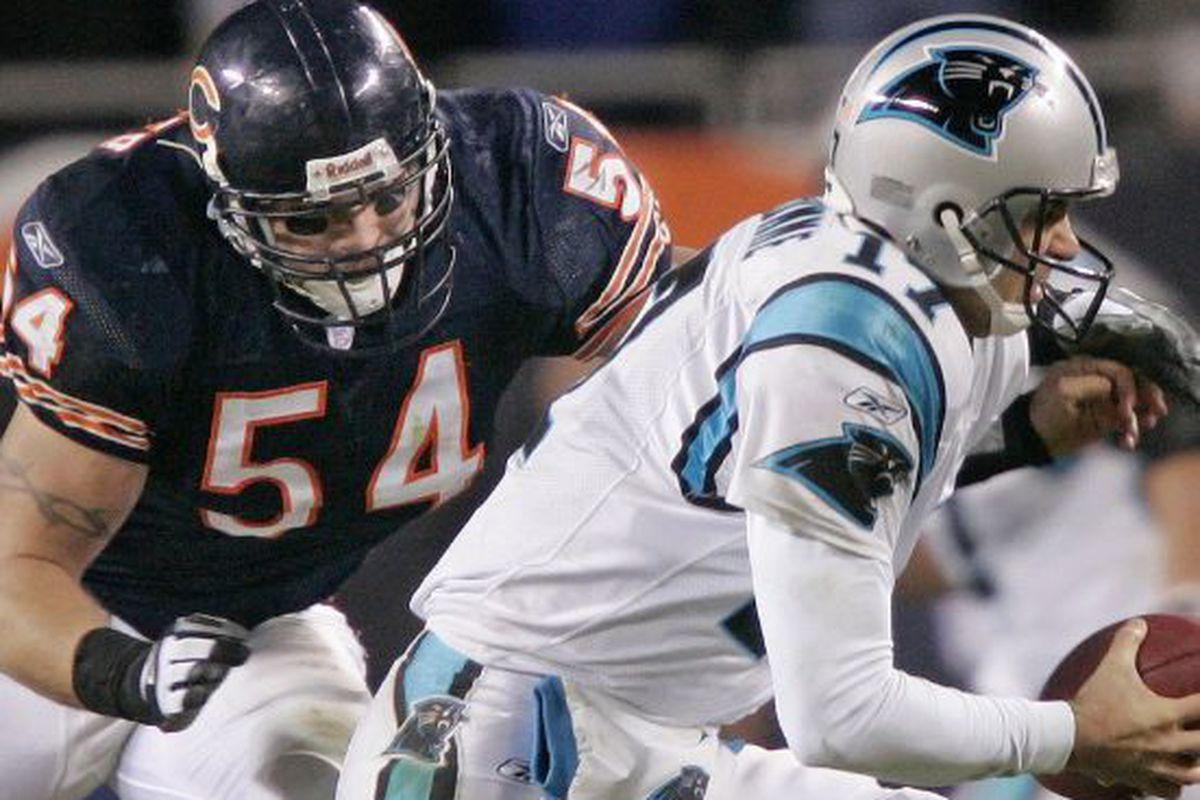 Bears Hall of Famer Brian Urlachers legacy uncertain   Chicago 1200x800