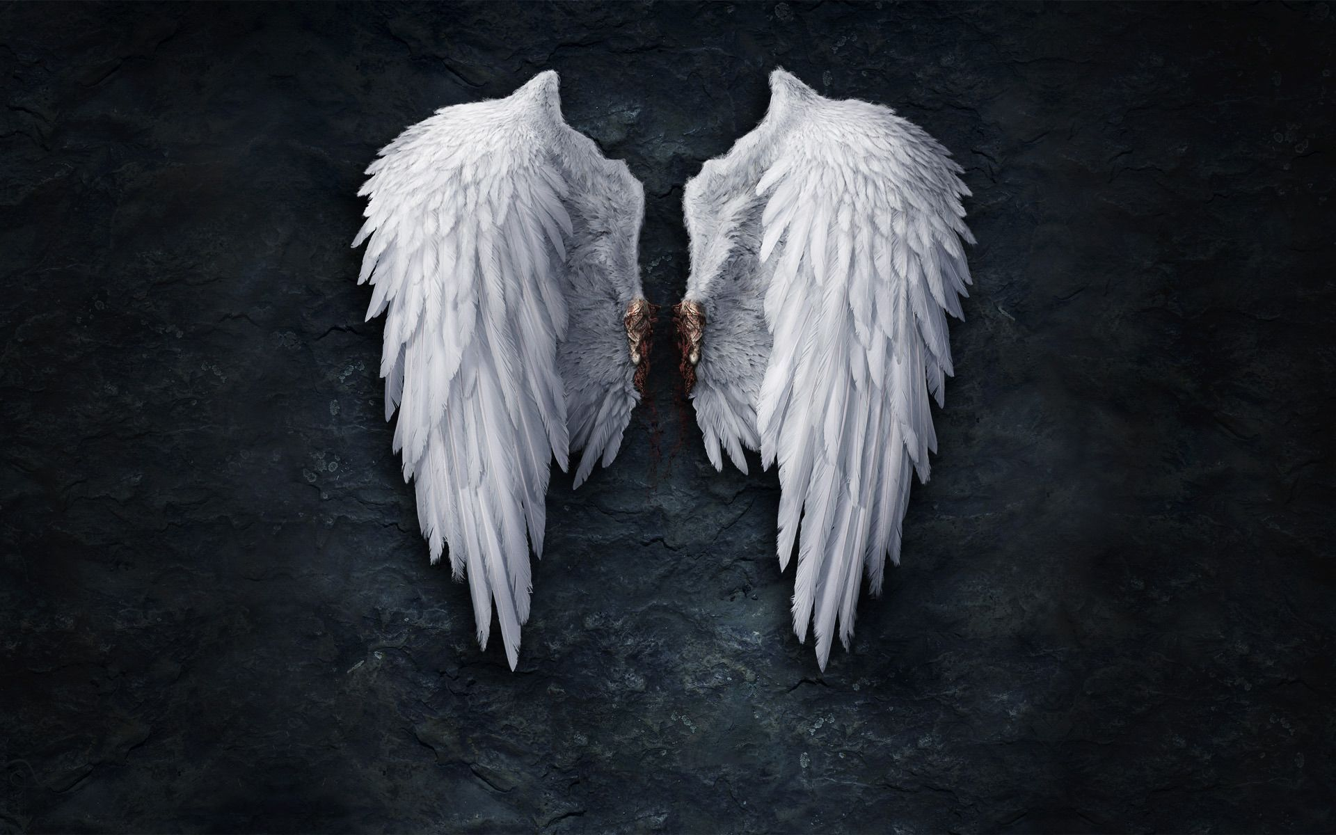 Broken Angel Wings wallpapers HD   421877 1920x1200